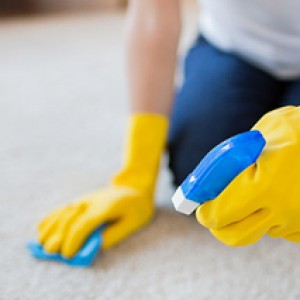 pulizia moquette ordinaria