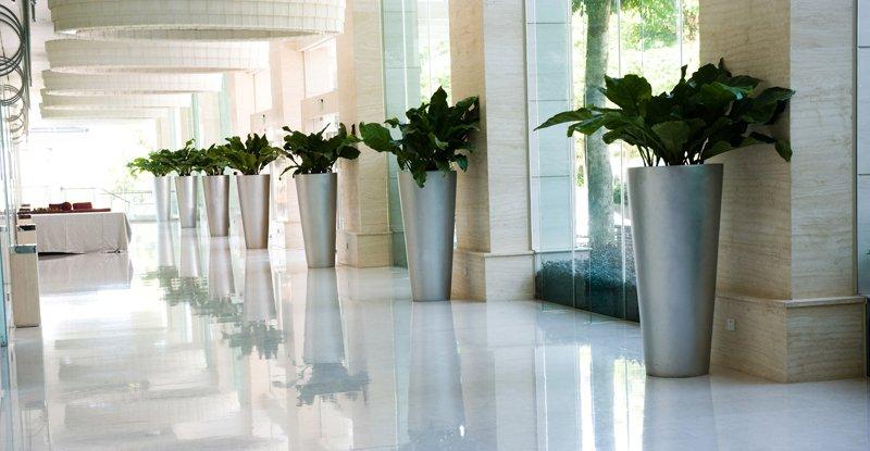 Arredare le stanze con le piante economico e - Piante per ufficio ...