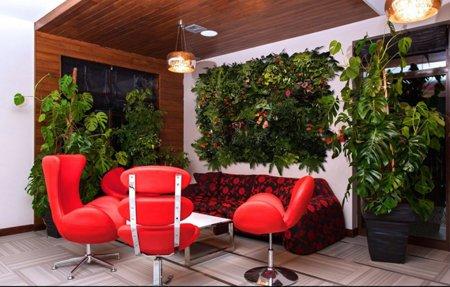 arredare le stanze con le piante? economico e multifunzione ... - Arredamenti Interni Economici