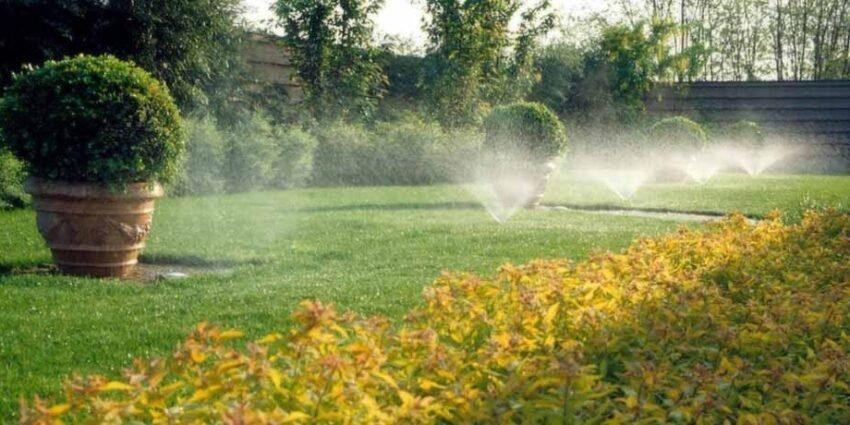 Luglio: lavori in giardino che richiedono esperienza