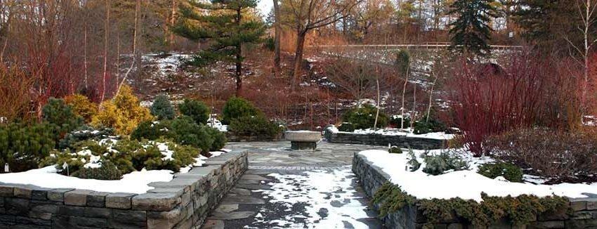 Lavori di giardinaggio e manutenzione per il mese di dicembre